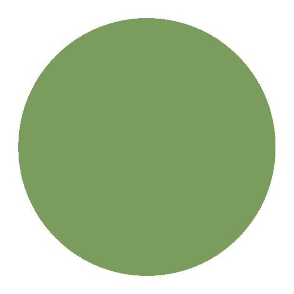 color circles_green