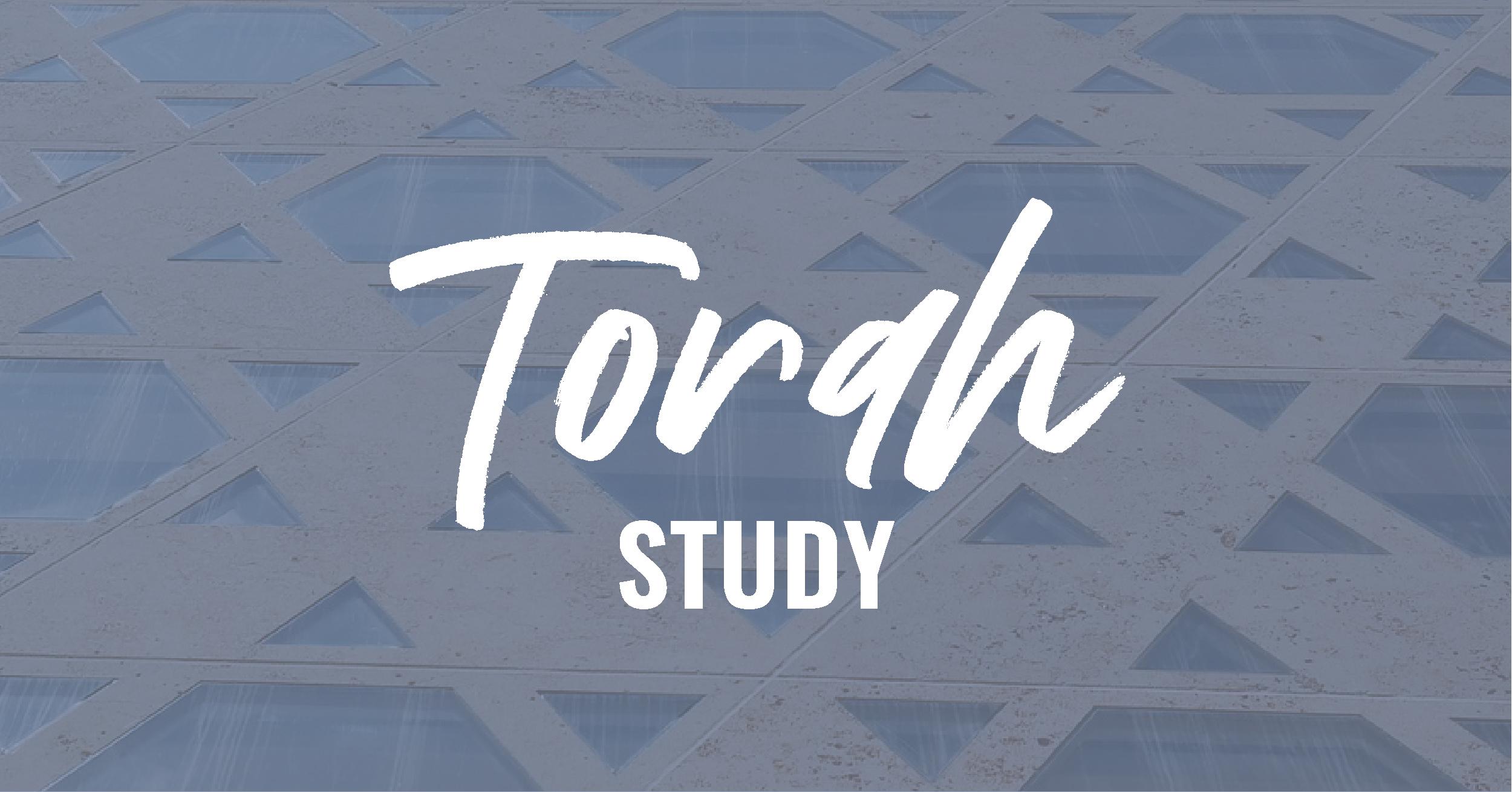 torah study social_rect